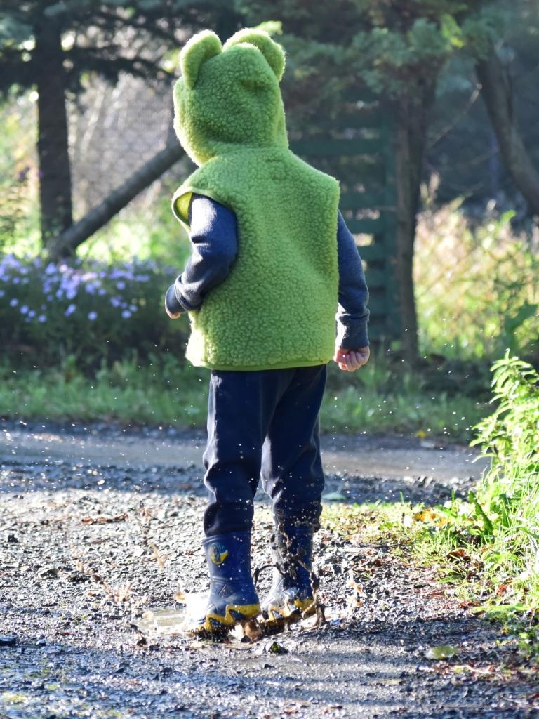 Vestă copii din lână merinos cu model animale broscuţă - Froggy Alwero